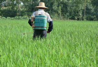 农药 | 农民欠收、粮价低,你说为啥你的大牌农药没市场?!