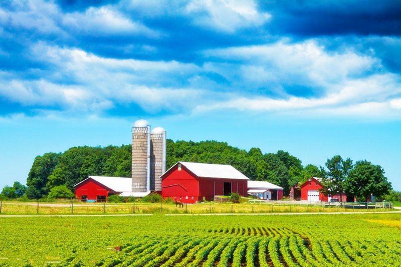 家庭农场怎么做才能不走弯路,成功赚钱?这几个过来人的经验不得不看!