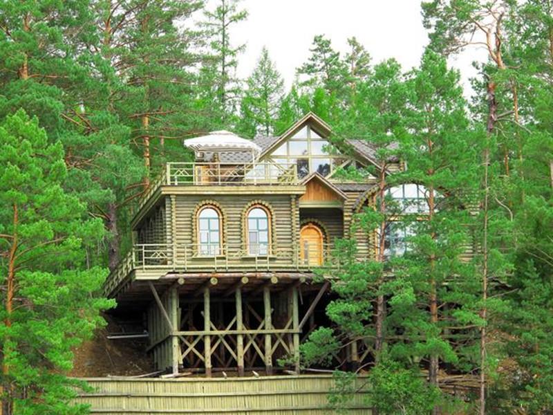 符合这几个条件,就能申请家庭林场了,快来看看怎么做吧