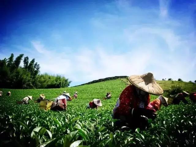 新模式|国外循环农业的几种模式