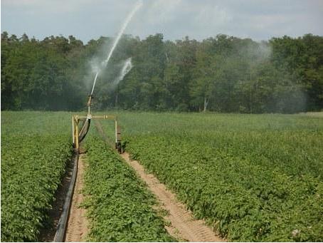 如何创建现代农业产业园?五大现代农业产业园成功案例分析