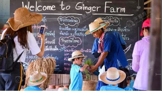泰国亲子农场为何成为网红?这里有3大秘诀