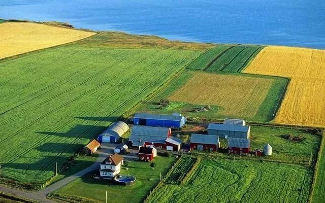 新模式|农业+游戏赚翻天,原来创意农业还能这么玩!