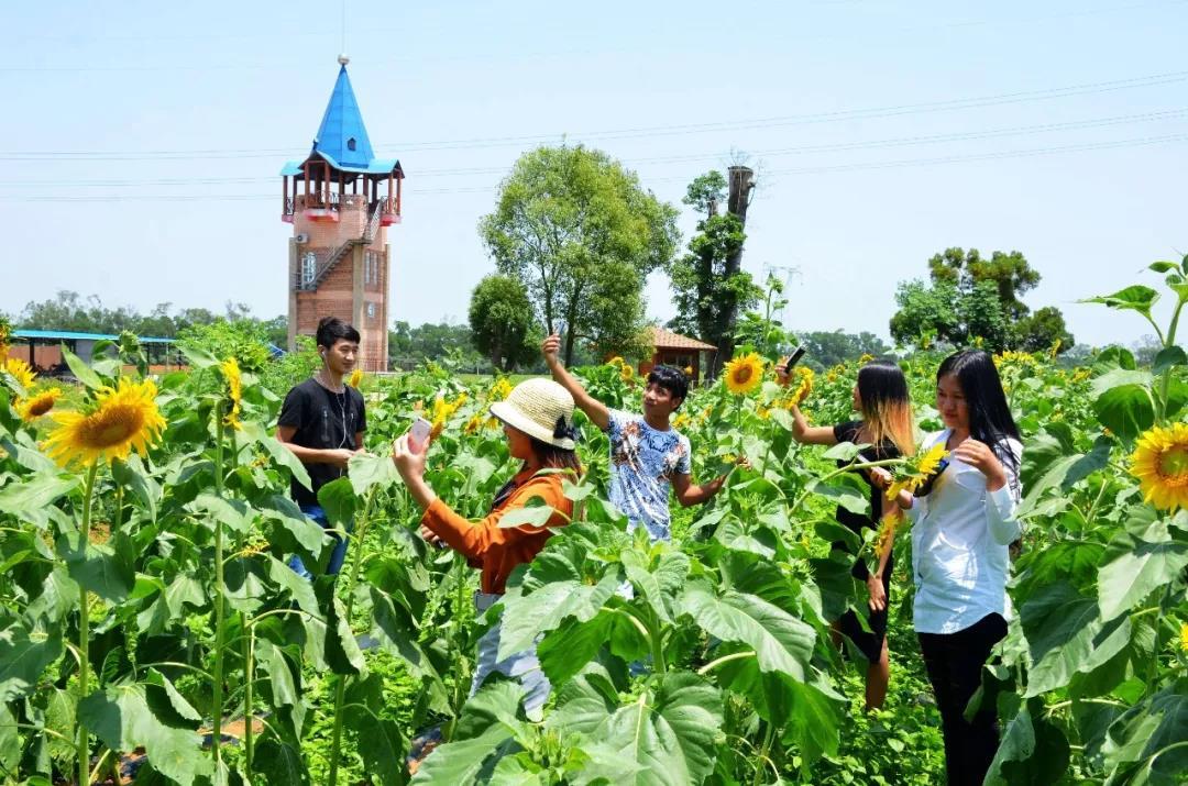 三农日报|研究:数字农业提升空间巨大;大于110亩的家庭农场效益最高