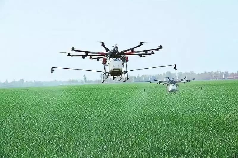 三农日报|国家支持返乡人员发展乡村产业项目;未来单个农场面积将达2000亩