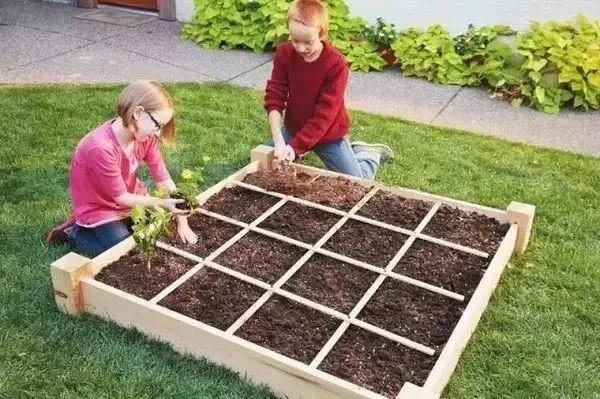 【操盘分享】亲子农场农业种植你安排对了吗?