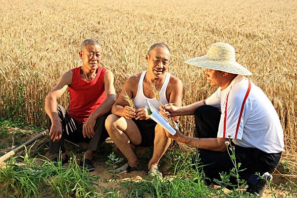 【政策解读】未来谁来种地?怎样种好地?10万家示范家庭农场如何打造?