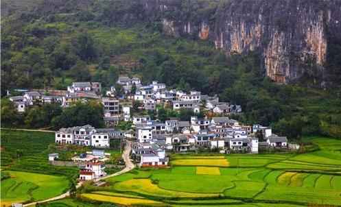 【趋势预测】5年内,中国农业发展五大趋势,未来的创业方向,你看好吗?