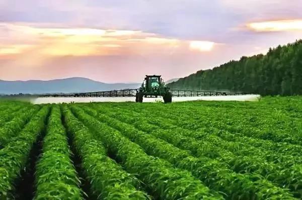 中国农业未来发展新模式,别跟不上时代!