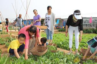 家庭农场全篇!看看发展家庭农场的优势、条件和规模!