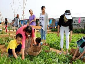 农村家庭农场能申请补贴了,快来看一看你家的地够资格吗?