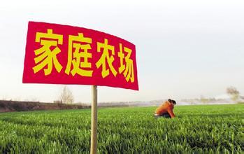 在中国,如何发展家庭农场?