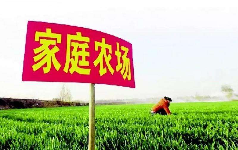 通知|农业农村部推介第一批26个家庭农场(附名单)
