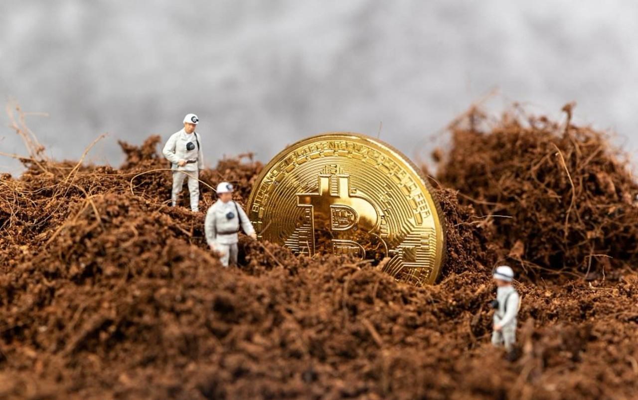 区块链迎来政策风向标!区块链农业又将火起来