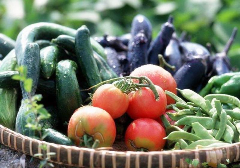 农产品生鲜电商平台运营失败的三大症结