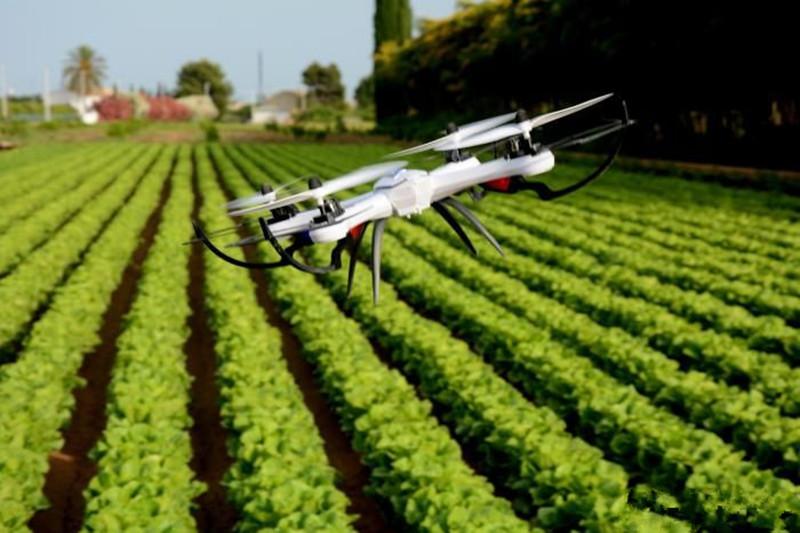 一周汇总丨农业产业10大事件盘点(11.13-11.19)