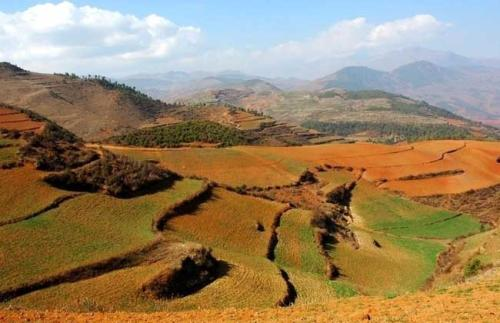 三农日报|速看!土地要升值;资本更青睐产业链一体化的农业公司