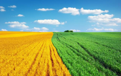 三农日报|这个农业项目最低补助1800万 ;农业生产托管新模式值得借鉴