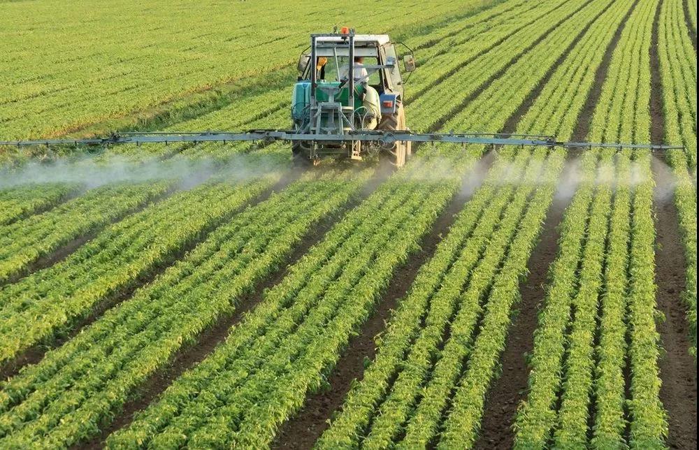 农业产业周报|京东生鲜、中化农业最新动态;关于植物工厂、有机食品的专家观点