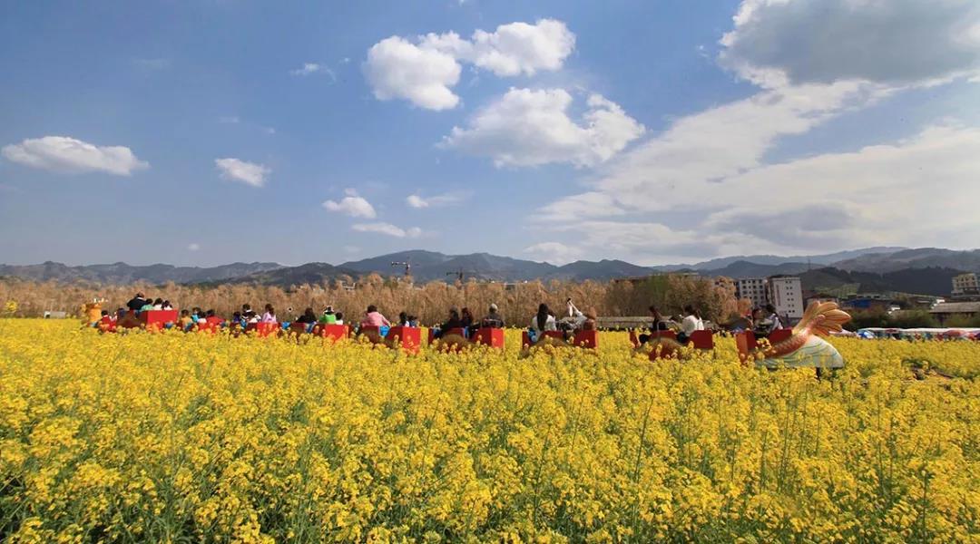 三农日报|中国农业面临危机:农业劳动力正在减少;数据显示:千亿资本涌入生鲜新零售