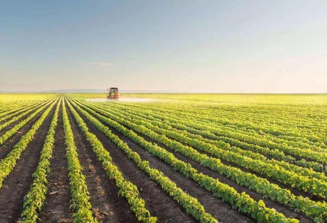 2020年农业赛道投资机会点在哪?