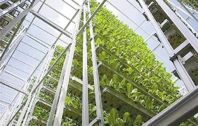 三农日报|国家将支持认养农业和可视农业;中石化开启卖菜模式