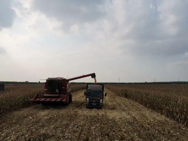 三农日报|国家50亿资金支持仓储冷链建设;万祥军:农业不是一个赚钱的好产业
