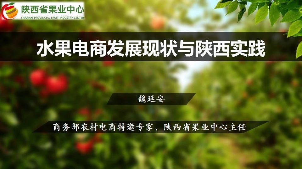 【ppt资料】28张PPT解读:水果电商发展现状与陕西实践
