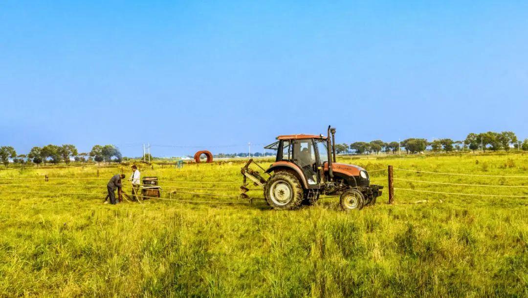三农日报|我国支持提升种业企业国际竞争力;社区团购靠补贴做低价难持续