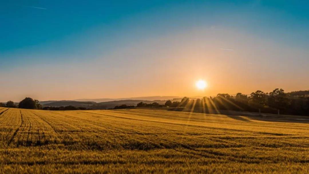 【新年特刊●致敬时代】农业食品生鲜领域迎来最好的年代!