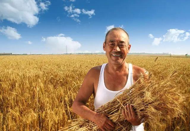 三农日报|国家鼓励农业转基因生物研发与创新;什么是生鲜供应链?具有3大特点