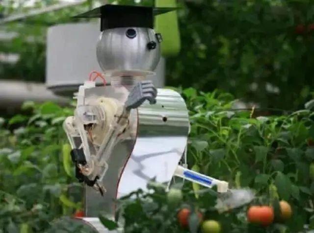 农业产业周报|多功能农业势在必行;转基因育种是投资新热点;叮咚买菜或将上市