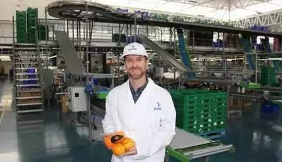 从中国褚橙到世界柑橘老大,有多远的路?