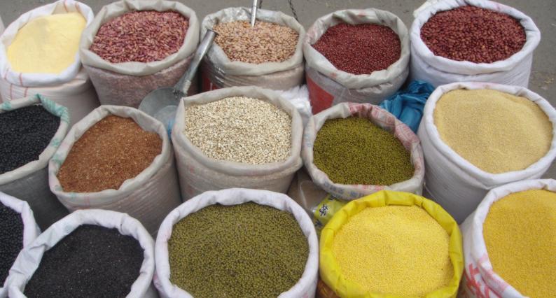 联合国粮农组织发布《2019世界粮食及农业状况》报告
