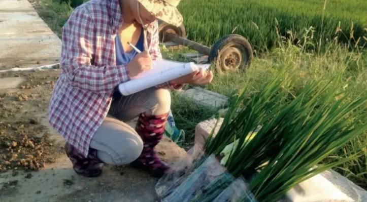 功能农业:未来高端食品的发展方向?