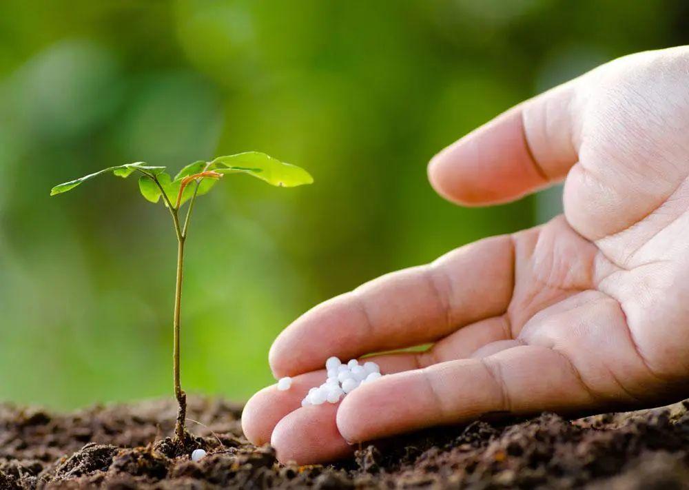 三农日报 农业农村部:大力发展数字农业;农业终极目标:把农业变食品