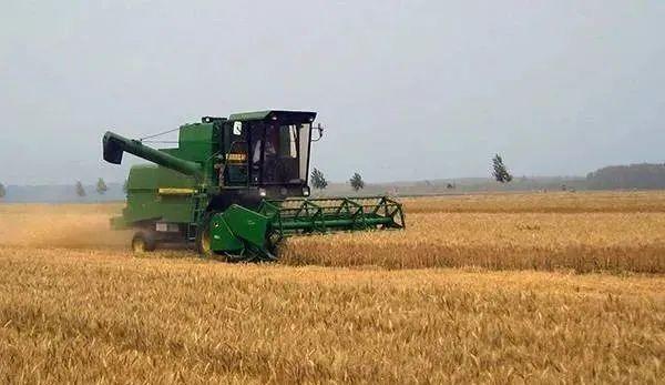 三农日报 券商:建议关注转基因玉米产业链;数据:食品巨头营收迎来利好