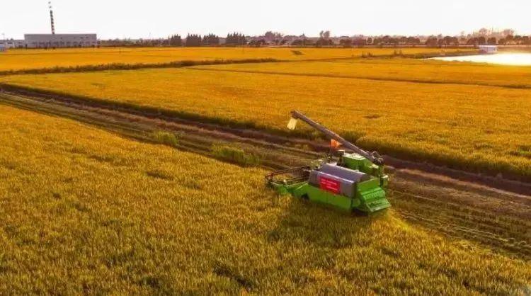农业产业周报|大北农、汇通达、三全食品、光明食品、周黑鸭最新动态;本周4例资本事件