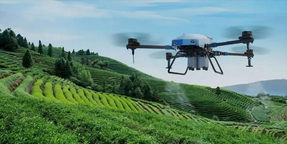 农业科技、大食品,高歌猛进!(报告透视)