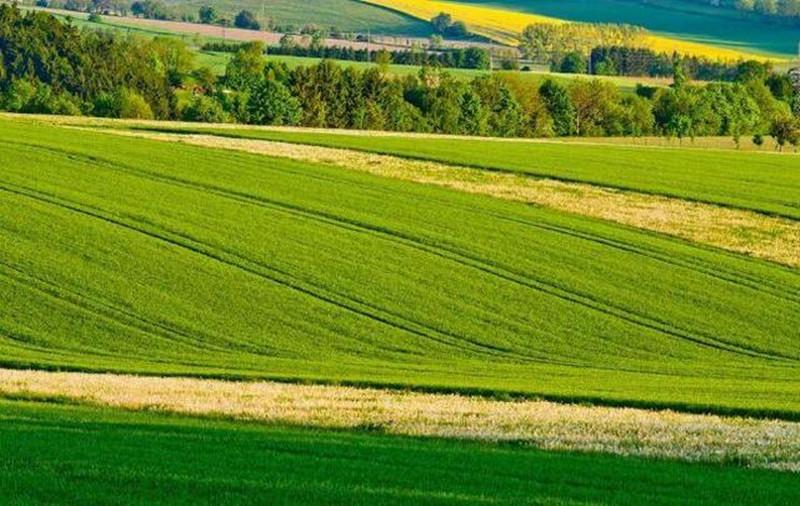 绿色农业的发展前景