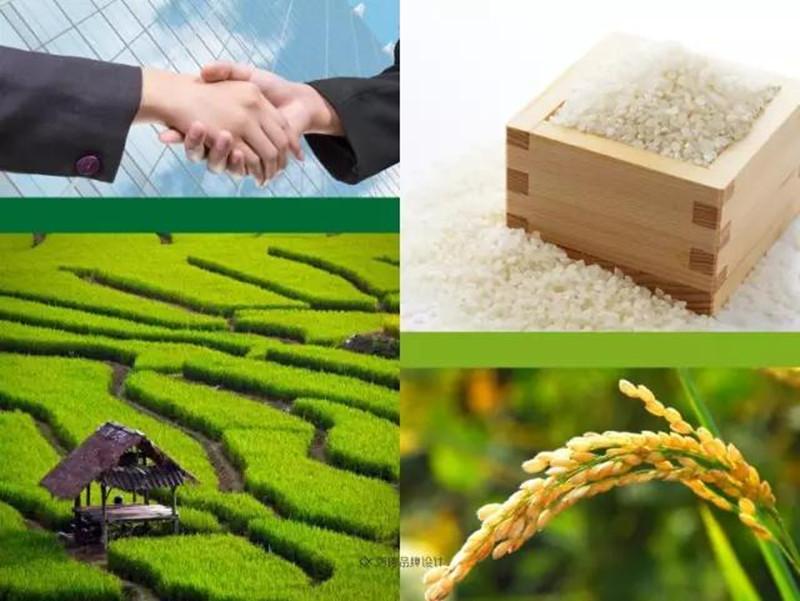产业分析|中国农产品该如何与国外农产品竞争?