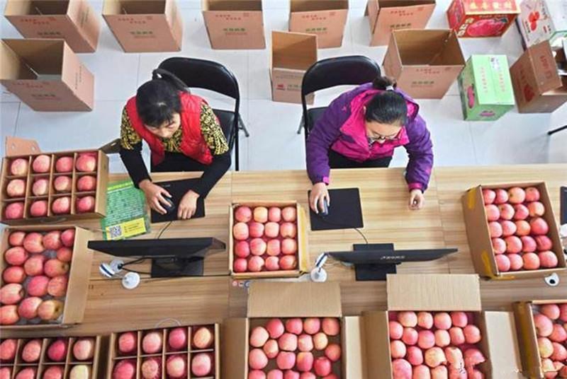 """农产品网上卖或成""""新常态"""""""