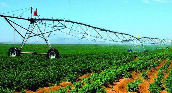 从7大黑色农产品,谈未来农业发展3大格局!