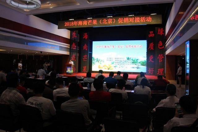 开展产销对接,引领海南芒果进军北京市场
