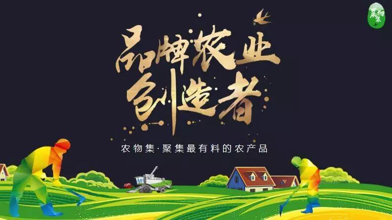 独家分享|农物集联合创始人马大为:寻找农产品上行的压舱石