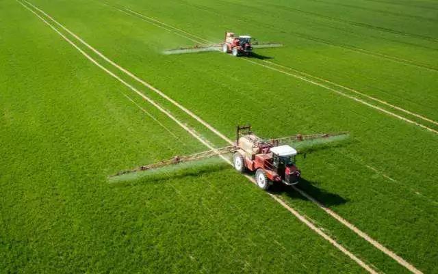 谈未来 中国农业未来十年趋势预测