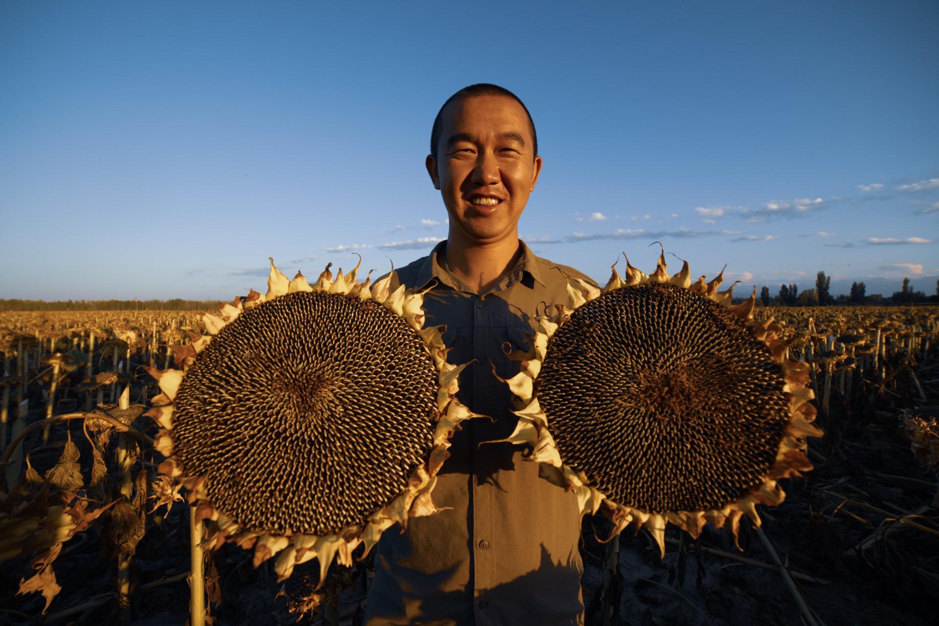 当农发贷遇上中国农民丰收节,助力农民增收致富