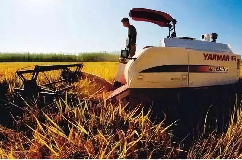三农日报|3000家农产品电商无一盈利;京东高管:中国生鲜行业利润低