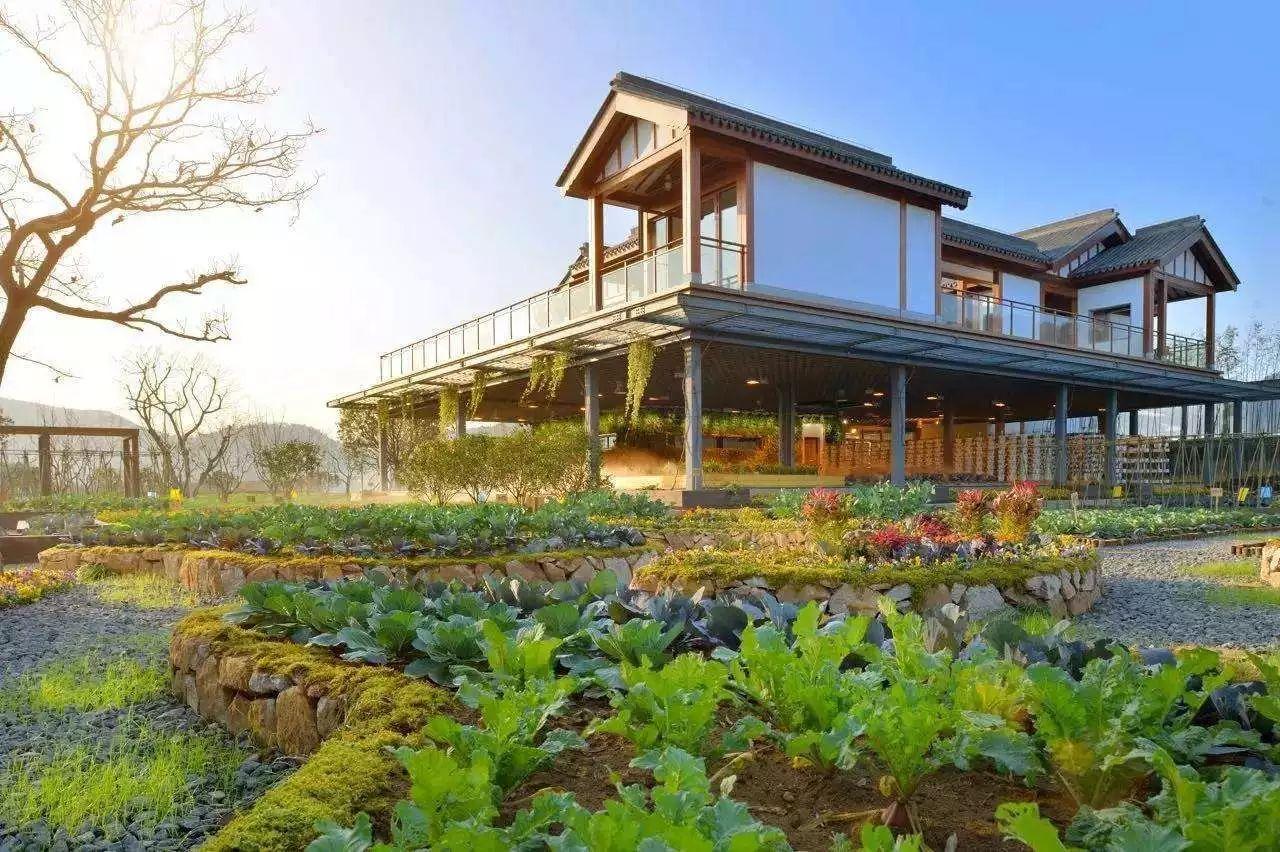 大揭秘!房地产商如何布局农业:一定要做自己擅长的!