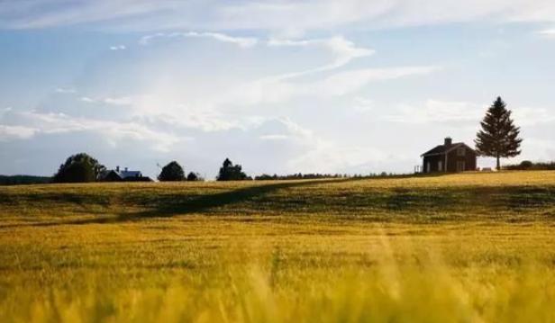农业最赚钱的十大运营模式